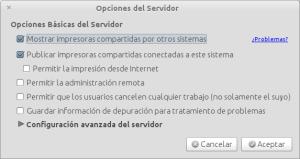 Opciones del Servidor_001